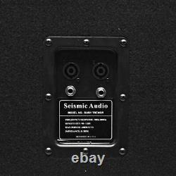 Seismic Audio 15 Pro Audio Sub Cabinet PA DJ PRO Audio B& Speaker New Sub 300W